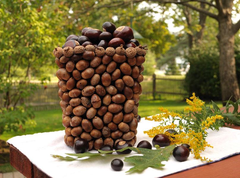acorn-vase