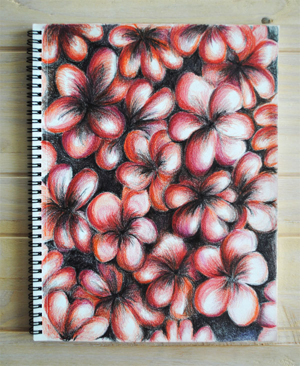 red flowers pencil abstract