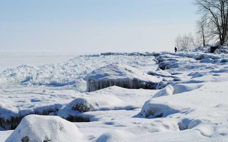 polar vortex 2019 chicago