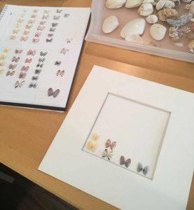 framed shell art