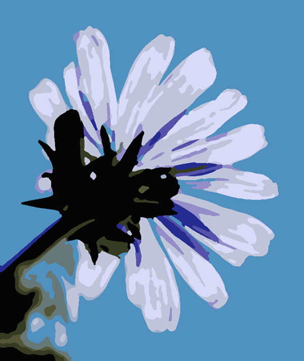 Paint by number free download