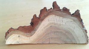 raw wood wedge