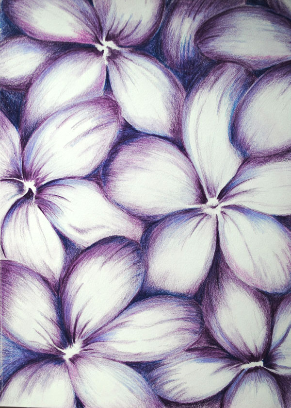 purple flowers abstract