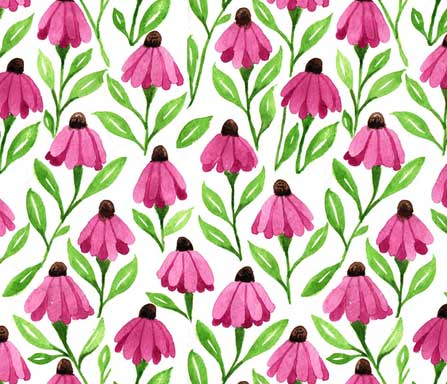 cone flower fabric