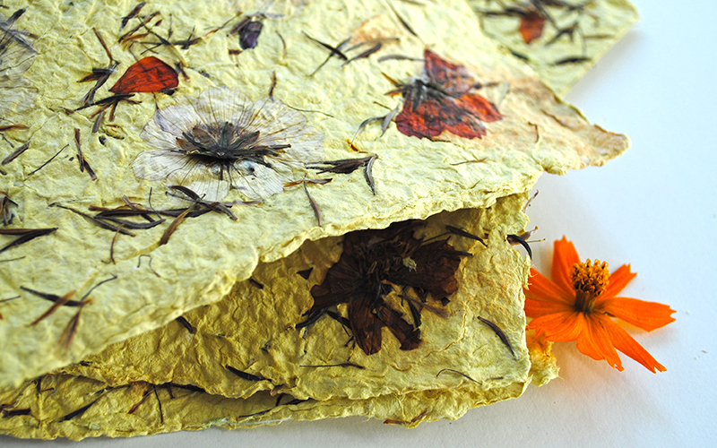 seed paper diy